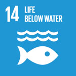 (14)Life below water