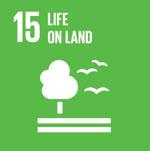 (15)Life on land